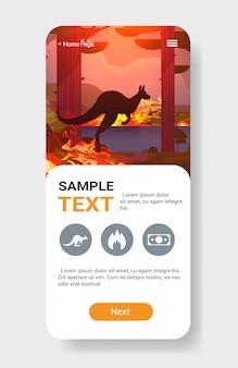 Sauter animal sauvage forêt de kangourous incendies dangereux feu de brousse buisson brûler des arbres concept de catastrophe naturelle intense flammes orange écran smartphone application mobile vertical