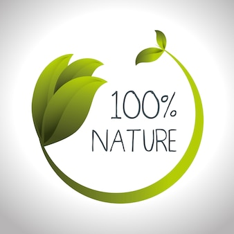 Sceller le produit naturel garanti vector illustration design