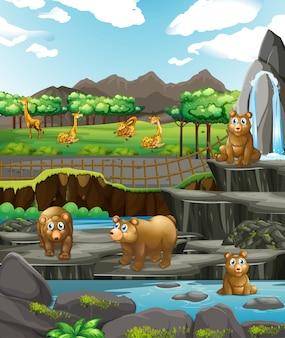 Scène avec des animaux au zoo