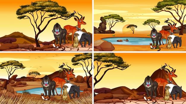 Scène avec des animaux dans les champs de savane