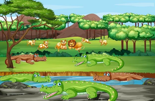 Scène avec des animaux dans la forêt