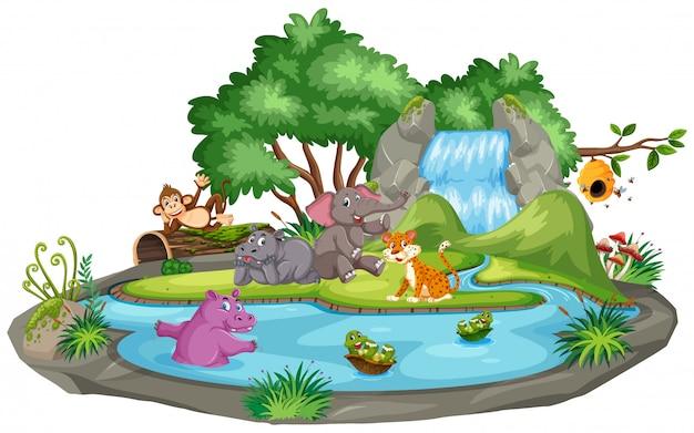 Scène d'animaux et étang