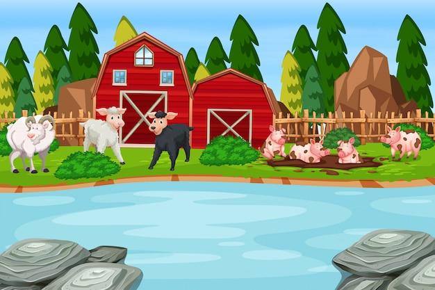 Une scène d'animaux de ferme