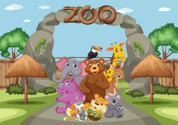 Scène avec des animaux sauvages dans le zoo pendant la journée