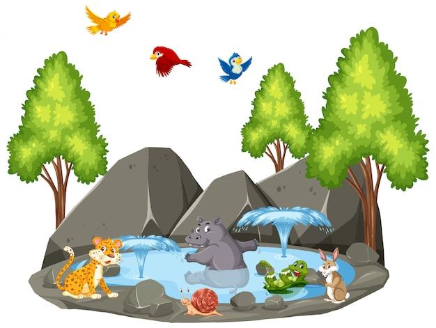 Scène d'animaux sauvages et fontaine