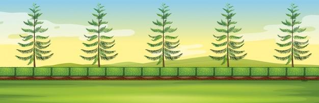 Scène avec des arbres dans le parc
