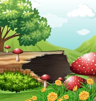 Scène avec bûche de bois et champignons
