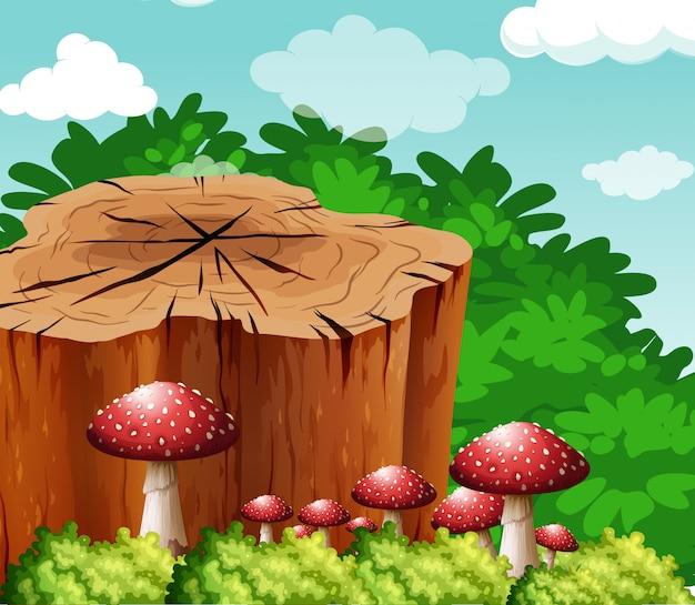 Scène avec bûche et champignon dans le jardin