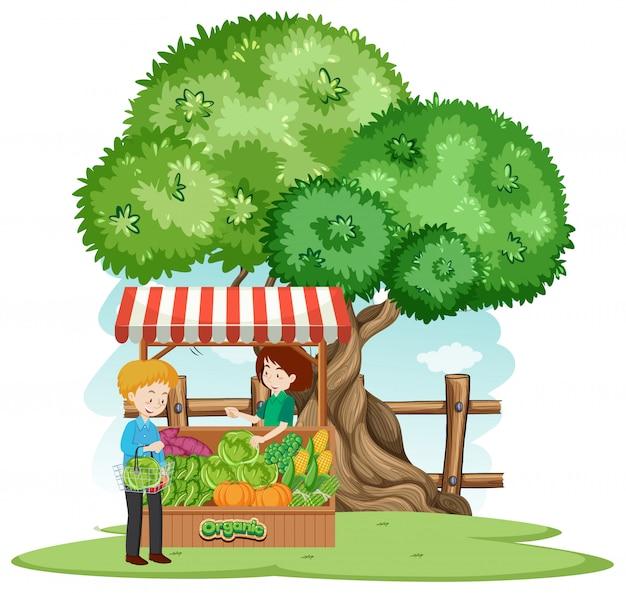 Scène avec client achetant des légumes à la ferme