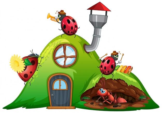 Scène avec coccinelles et fourmi sur la maison