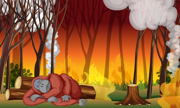 Scène de contrôle de la pollution avec le singe et les incendies de forêt