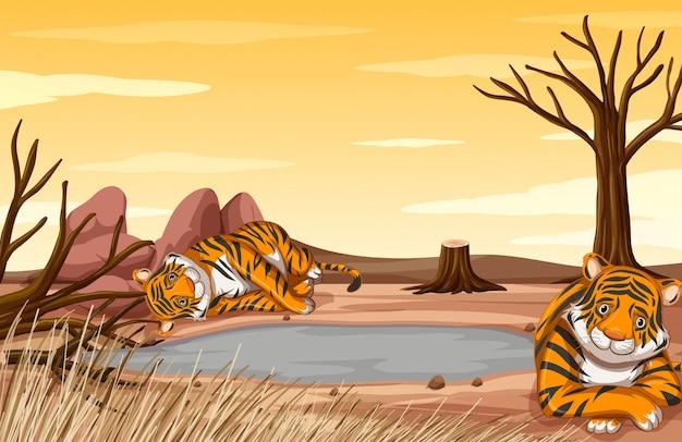 Scène de contrôle de la pollution avec des tigres tristes sur le terrain