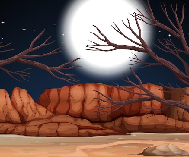 Scène du désert dans la nuit