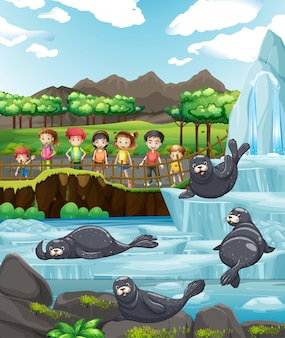 Scène avec enfants et nombreux phoques