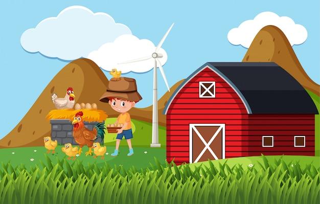 Scène de ferme avec garçon et poulets à la ferme