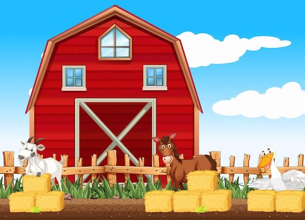 Scène de ferme avec de nombreux animaux près de la grange