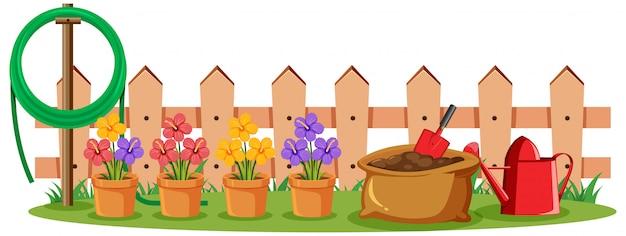 Scène avec des fleurs colorées dans le jardin