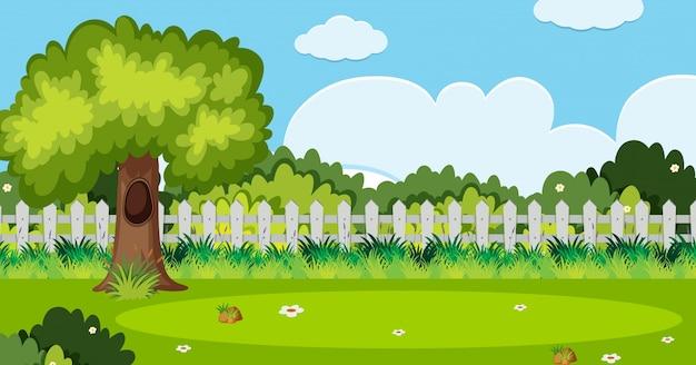 Scène de fond avec un arbre et une clôture blanche dans le jardin