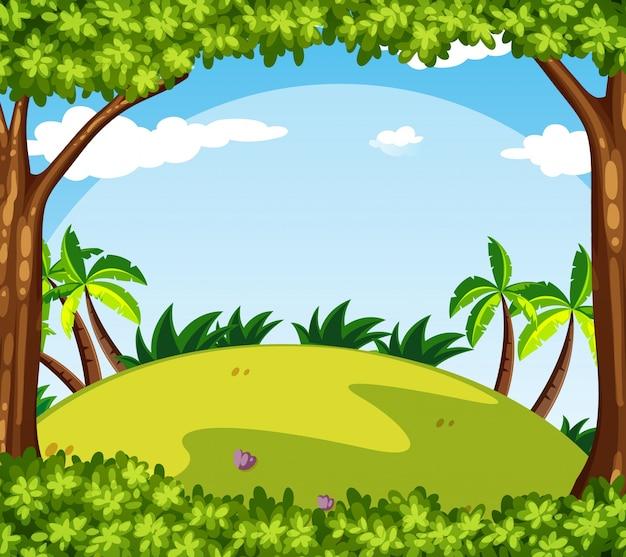 Scène de fond avec des arbres sur la colline