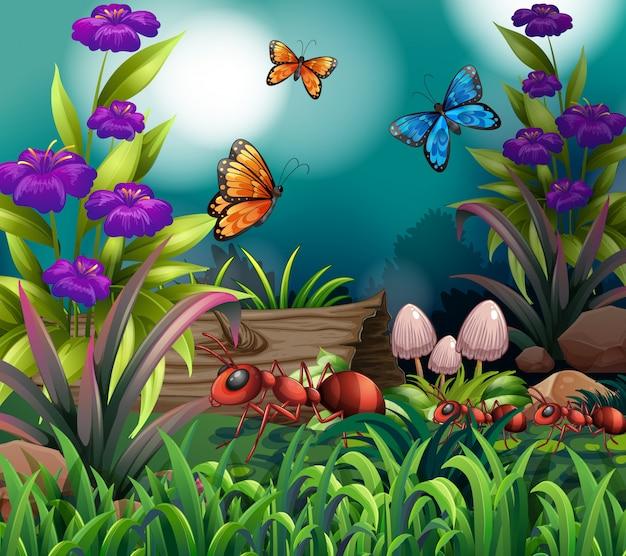 Scène de fond avec des papillons et des fourmis dans le jardin