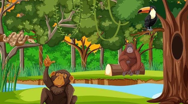 Scène De Forêt Avec Différents Animaux Sauvages Vecteur gratuit