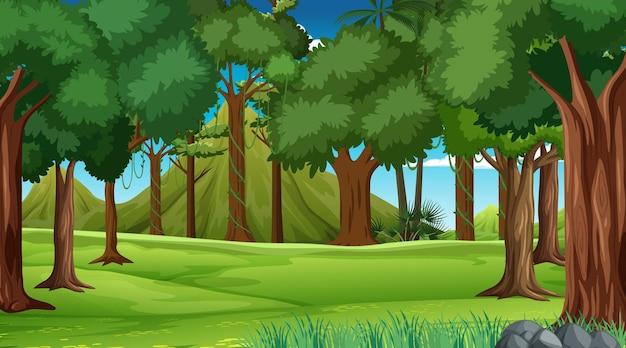Scène de forêt avec divers arbres forestiers et montagne