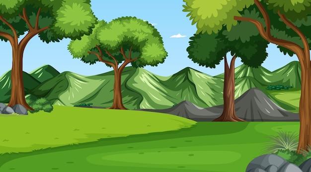 Scène de forêt avec divers arbres forestiers
