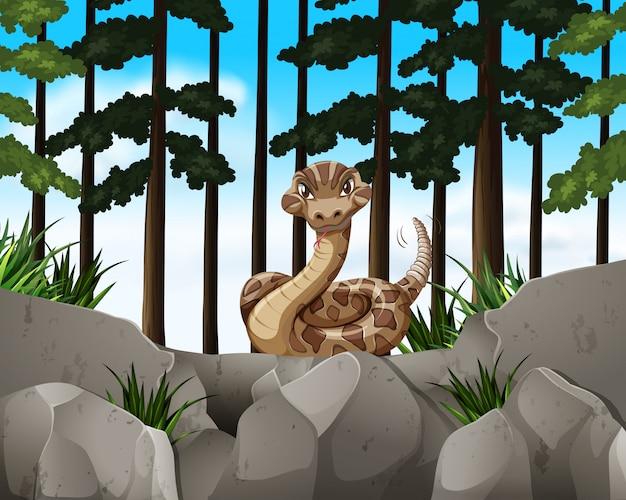 Scène de forêt avec serpent sauvage