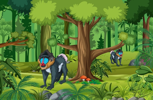 Scène de forêt tropicale humide avec la famille des mandrills