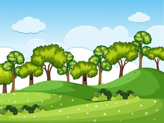 Scène de forrest avec des arbres sur les collines