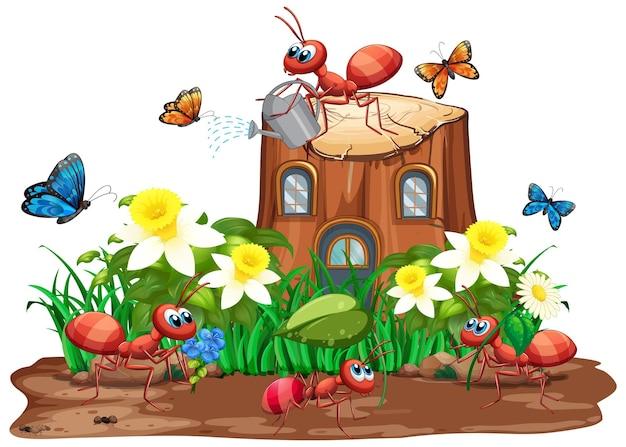 Scène avec fourmis et papillons dans le jardin