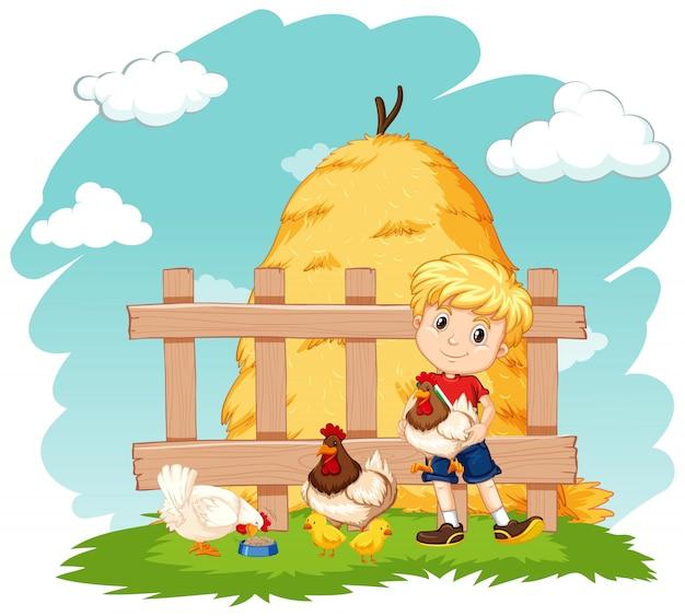 Scène avec garçon et beaucoup de poulets à la ferme