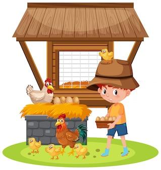 Scène avec garçon ramassant des œufs à la ferme