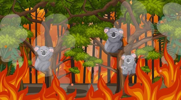 Scène avec une grande traînée de poudre avec un animal pris au piège dans la forêt