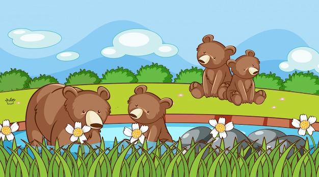 Scène avec des grizzlis dans le jardin