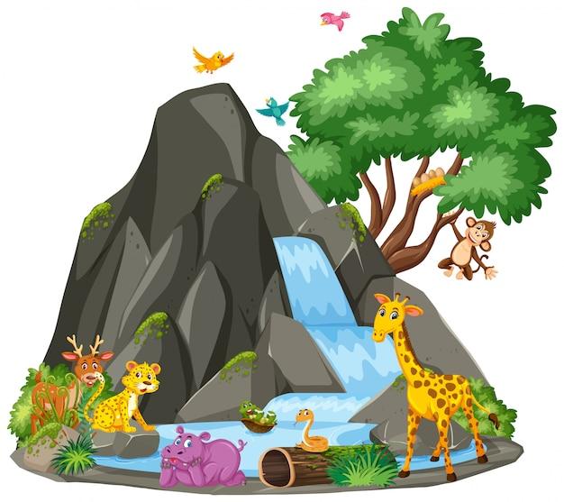 Scène d'illustration d'animaux à la cascade