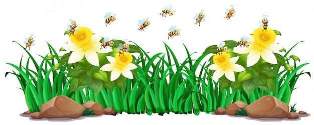 Scène de jardin avec des fleurs et des abeilles