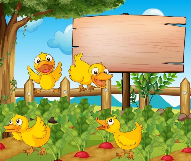 Scène de jardin avec quatre canards et signe