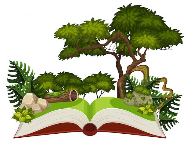 Scène de la jungle sur un livre pop-up