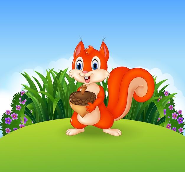 Scène de la nature avec un écureuil tenant un accorn