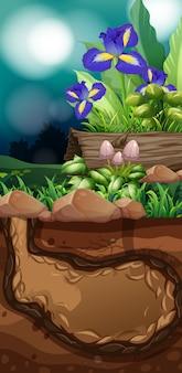 Scène de la nature avec des fleurs et des champignons