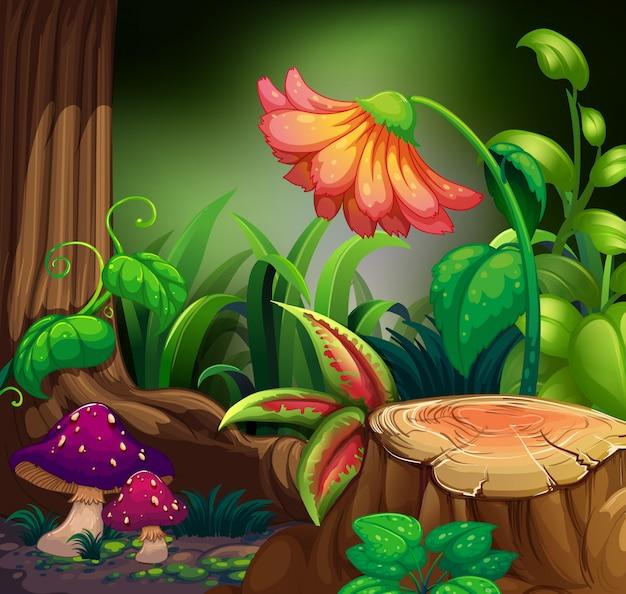 Scène de la nature avec des fleurs dans la forêt sombre