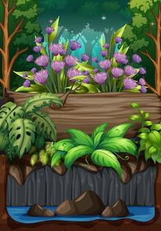 Scène de la nature avec des fleurs en forêt