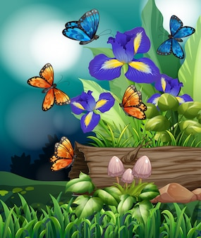 Scène de la nature avec des fleurs de papillon et d'iris