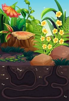 Scène de la nature avec des fleurs et un trou sous terre