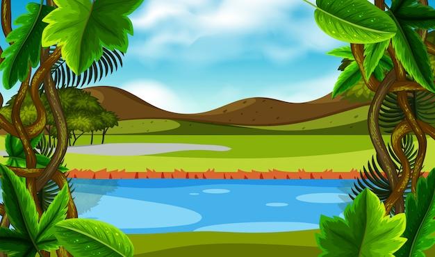Scène nature rivière verte