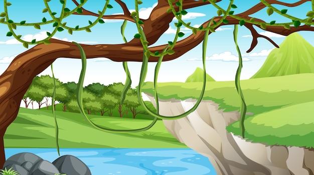 Scène de nature avec ruisseau qui coule à travers la falaise