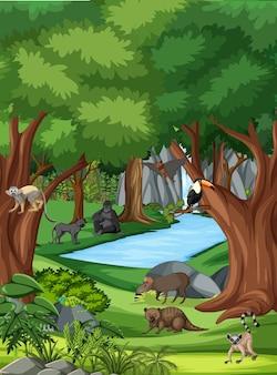 Scène de nature avec ruisseau qui coule à travers la forêt avec des animaux sauvages