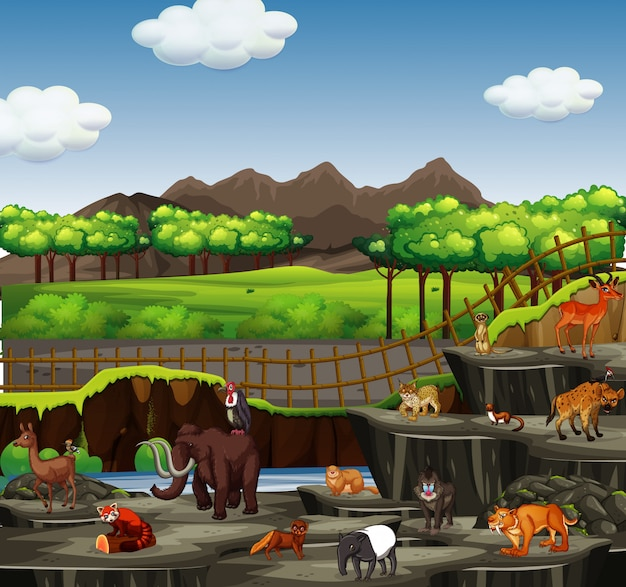 Scène Avec De Nombreux Animaux Au Zoo Vecteur Premium
