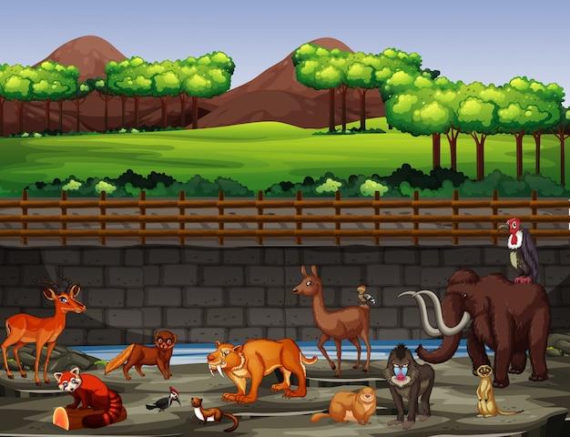 Scène avec de nombreux animaux au zoo
